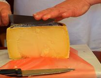 Frauenausschnitt yelow Käse Lizenzfreies Stockbild