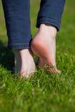 Frauenbeine, die auf Gras gehen Stockfoto