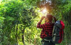 Frauenblickferngläser der touristischen Reise auf im Wald lizenzfreie stockbilder