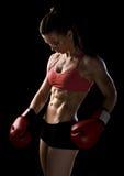 Frauenboxer Stockbilder