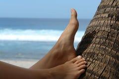 Frauenfüße auf einer Kokosnuss Lizenzfreies Stockbild