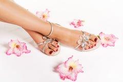 Frauenfüße mit pedicure und Blumen stockfotos
