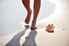 Frauenfahrwerkbeine, die auf nassen Sand gehen Stockbild