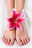 Frauenfahrwerkbeine mit rosafarbener Lilie Stockfotos