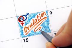 Frauenfinger mit Stiftschreibens-Anzeige Ovulation im Kalender stockfoto