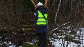 Frauenforstwirtschaftsangestellter, der defekte Bäume überprüft stock video footage