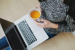 Frauenfreiberufler, der an Laptop vom Haus arbeitet lizenzfreie stockfotos