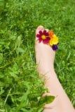 Frauenfuß, der auf dem Gras sich entspannt Lizenzfreies Stockbild