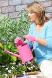 Frauengartenarbeit Stockbild