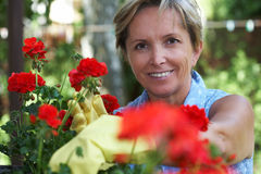Frauengartenarbeit Lizenzfreie Stockfotos