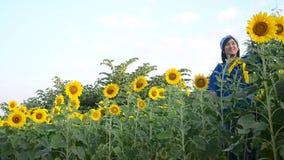 Frauengebrauchskamera Porträt und selfie des Reisenden thailändisches auf dem Sonnenblumenblumengebiet stock video footage