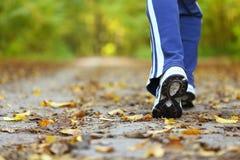Frauengehende Querlandspur im Herbstwald Lizenzfreie Stockfotos