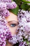 Frauengesicht mit Blumenfliederrahmen lizenzfreie stockbilder