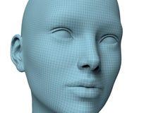 Frauengesicht in wireframe Linien lokalisiert auf Weiß Abbildung 3D lizenzfreie abbildung