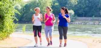 Frauengruppe, die am Seeuferrütteln läuft Stockfotos