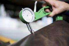 Frauenhände benutzen ledernes Stärkemessgerät an mit einem natürlichen braunen Leder Vorbereiten der Rohstoffe für Fertigung stockfotos