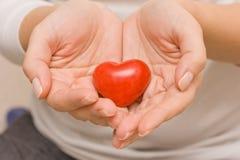 Frauenhände, die ein kleines rotes Herz halten Liebe glück obacht Gesundheitswesen Zwei verklemmte Innere Stockbild
