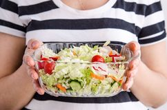Frauenhände, die Gemüsesalat des strengen Vegetariers halten stockfotografie