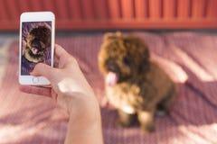 Frauenhände mit dem intelligenten Mobiltelefon, das ein Foto des spanischen wa macht Lizenzfreie Stockfotografie
