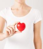Frauenhände mit Herzen Lizenzfreies Stockbild