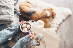 Frauenhände mit Schale Abschluss der heißen Schokolade herauf Bild; gemütliches Haus; lizenzfreie stockfotografie