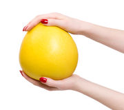 Frauenhände mit tropischer Zitrusfrucht Stockfoto