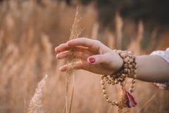 Frauenhand, die durch Weizenfeld läuft Die Hand des Mädchens, die gelbe Weizenährenahaufnahme berührt Herbstblattrand mit verschi stockfoto
