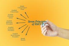 Frauenhand, die Element von HACCP-Prinzip für verwendet in der Herstellung zeigt Lizenzfreie Stockfotos