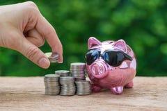 Frauenhand, die Münzen auf Stapel Münzen und glattem rosa piggy hält Lizenzfreies Stockbild