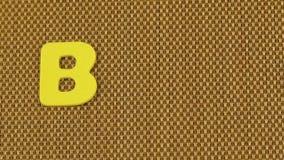Frauenhand schreibt das BIO Wort stock video