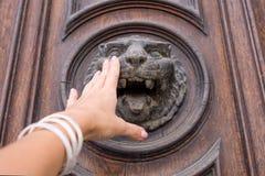 Frauenhandrührende alte Holztür mit Löwekopf-Kupfer knoc stockfoto