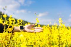 Frauenhandrührende gelbe Blumen Stockfoto