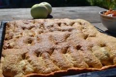 Frauenholding, die Apfelkuchen zeigt lizenzfreie stockfotos