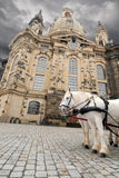 Frauenkirche in Dresden with horses in front. Church of Our Lady (Frauenkirche) in Dresden with pair of white horses in front Royalty Free Stock Image