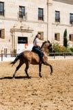Frauenpferdereiter, der ein braunes andalusisches Pferd in historischem Ro reitet Lizenzfreies Stockbild