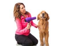 Frauenpflegenhund mit einem blowdryer stockbilder