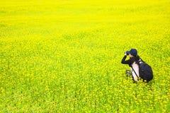 Frauenphotograph, der Abbildungen von den Blumen macht stockfoto
