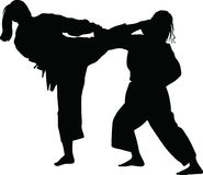 Frauenpraxis-Judokampfkunst Lizenzfreie Stockfotografie