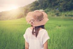 Frauenreisender, der Sonnenuntergang grünem Reisterrassenfeld betrachtet lizenzfreies stockfoto