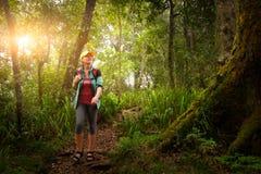 Frauenreisender mit Rucksack gehend in Regenwald stockbilder