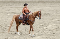 FrauenreitenSaddlebred Pferd Lizenzfreie Stockbilder