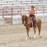 FrauenreitenSaddlebred Pferd lizenzfreie stockfotografie