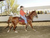 FrauenreitenSaddlebred Pferd lizenzfreie stockfotos