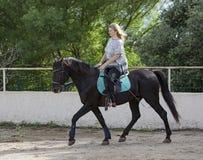 Frauenreiter und -pferd Stockfotografie