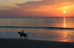 Frauenreitpferd auf Strandsonnenuntergang Lizenzfreies Stockfoto