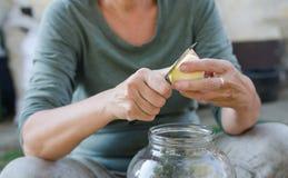 Frauenschale und Ausschnittapfel in Stücke für die Herstellung des Apfelessigs lizenzfreie stockfotografie