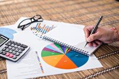 Frauenschreibensidee für Analyse-Geschäft und Finanz Lizenzfreie Stockbilder