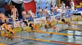 Frauenschwimmertauchen Stockfotos