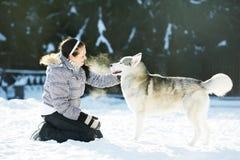 Frauenspiel mit Hund des sibirischen Schlittenhunds am Winter Stockfoto