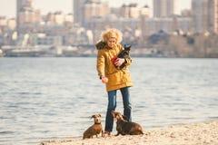 Frauenspiele mit Hunden Haustiere und Hunde, die Hunde ausbilden und erziehen Begleiter streichelt Konzept Begleiter streichelt K lizenzfreie stockfotos